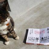 猫好きさん必見!福井県にある猫寺こと御誕生寺へ行ってきました